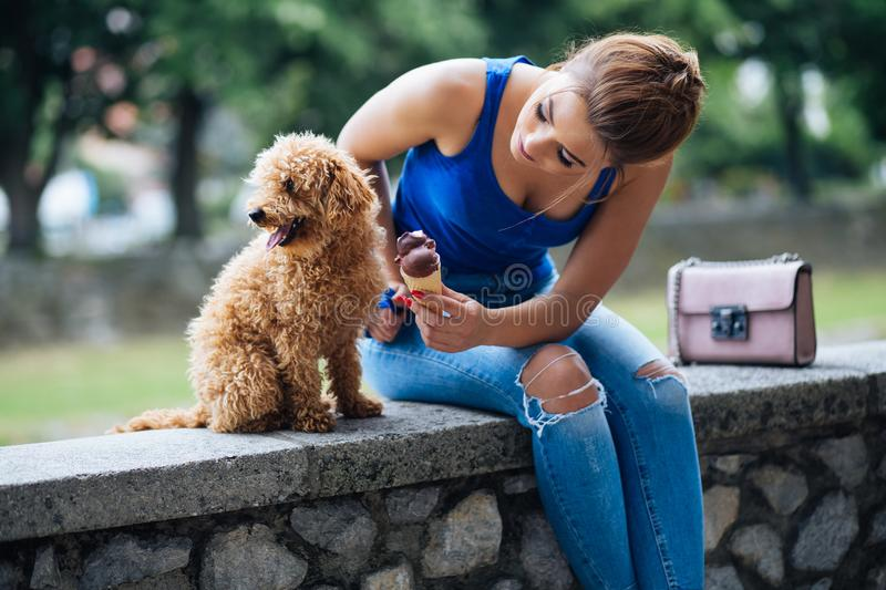 Teenager girl with red poodle. Portrait of beautiful smiling young woman with her little red poodle puppy royalty free stock image