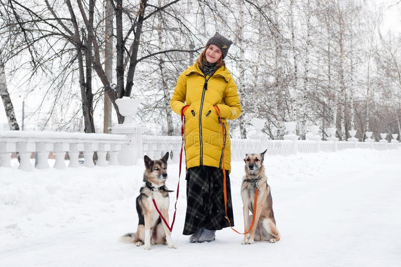 Portrait of beautiful smiling young woman with her two dogs in a snowy winter park.  royalty free stock image