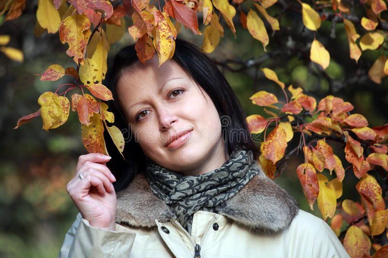 Portrait of beautiful woman in autumn leaves stock photography