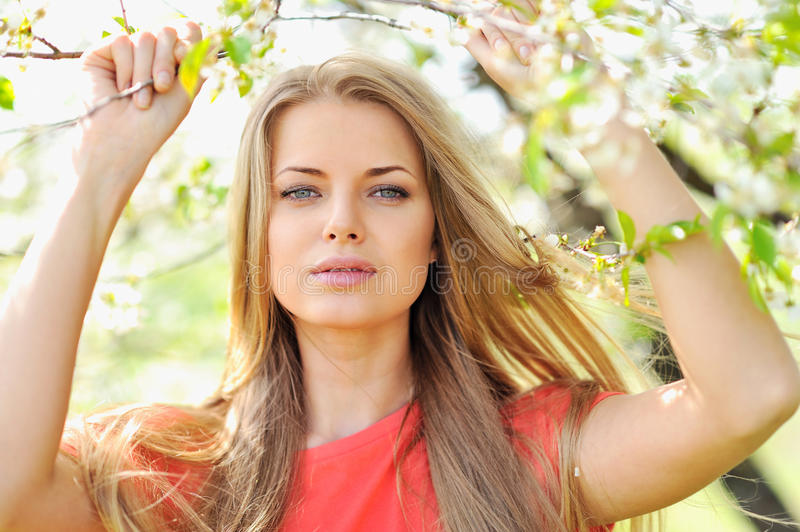 Portrait of beautiful woman in blooming tree in spring. Outdoor royalty free stock image