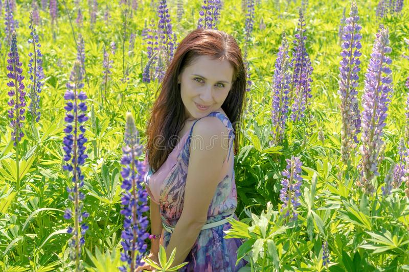 Portrait of a beautiful woman with green eyes brown long hair on a field of flowers. The girl in the purple dress is smiling and royalty free stock photography