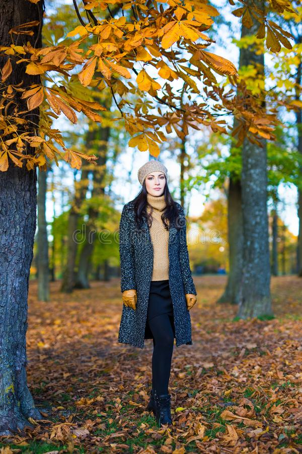 Portrait of beautiful woman walking in autumn park royalty free stock image
