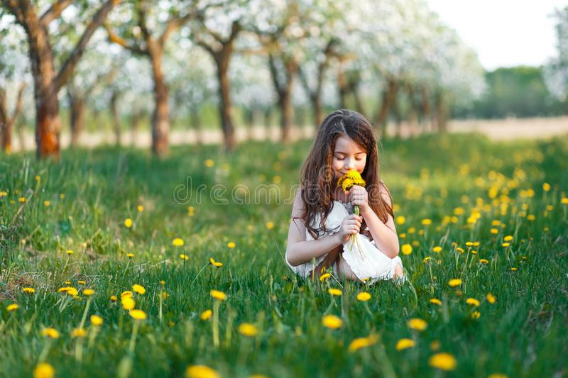 Portrait of a beautiful young girl with blue eyes in white dress in the garden with apple trees blosoming at the sunset stock photography