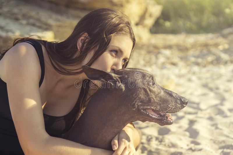 Portrait beautiful young girl kissing her dog breed xoloitzcuintle, summer on a sand beach at sunset stock image