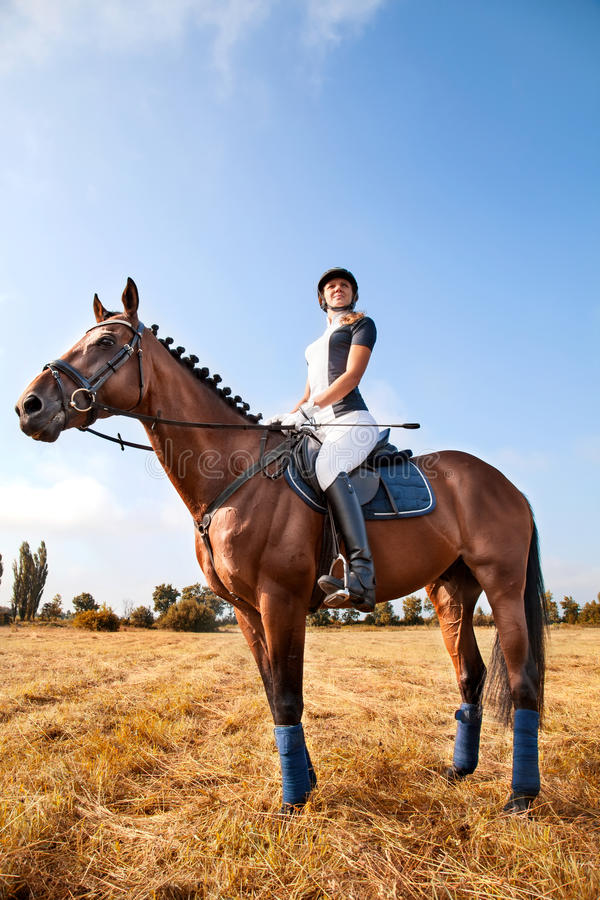 Portrait of beautiful young horsewoman sitting on a horse. Portrait of serious beautiful young girl jockey in uniform sitting on a horse against blue sky and stock photo
