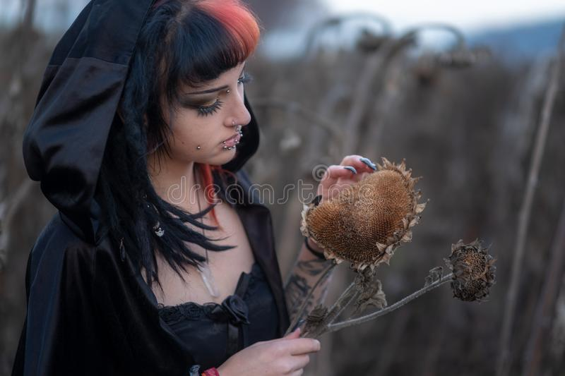 Portrait of a beautiful young individual, eccentric woman enjoys sunflower blossoms and seeds on the field. Portrait of a beautiful young individual, eccentric royalty free stock photos