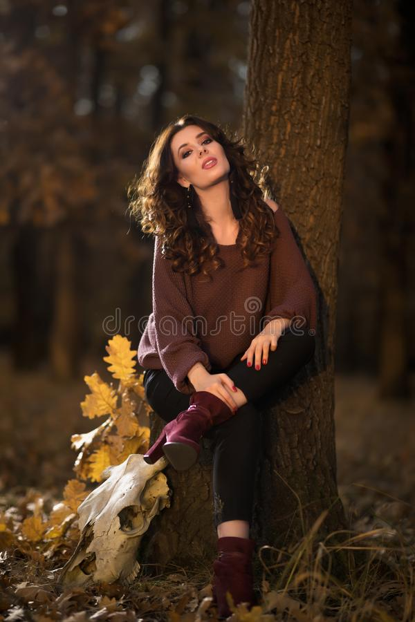 A portrait of a beautiful young woman in an autumn forest. Lifestyle, autumn fashion, beauty. royalty free stock photos