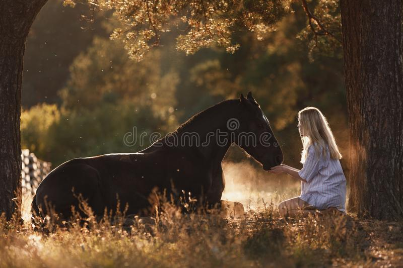 Beautiful young woman with blond hair sitting in front of lying horse and feed it from hands in sunset sunlight in autumn royalty free stock photos