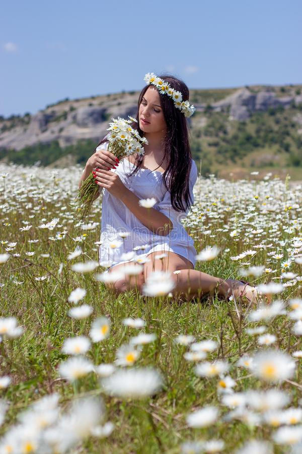 Portrait of a beautiful young woman in chamomile field. Happy girl collecting daisies. A girl resting in a field of chamomile. S stock images