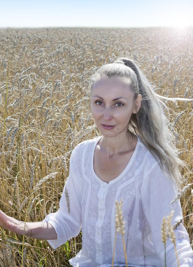 Portrait of a beautiful young woman in a white blouse with long blond hair in a field of golden wheat ears on a summer day stock photos