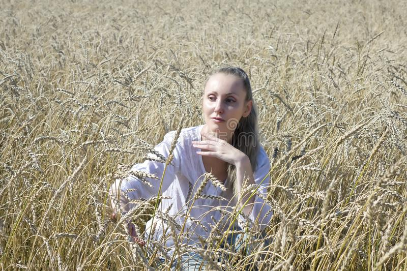 Portrait of a beautiful young woman in a white blouse with long blond hair in a field of golden wheat ears on a summer day stock photo