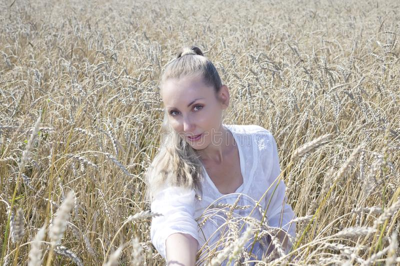 Portrait of a beautiful young woman in a white blouse with long blond hair in a field of golden wheat ears on a summer day royalty free stock photo