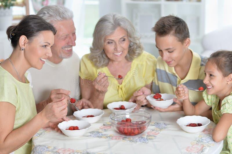 Portrait of big happy family eating fresh strawberries at kitchen. Big happy family eating fresh strawberries at kitchen stock photo