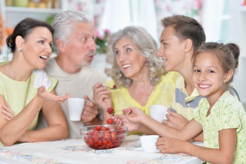 Portrait of big happy family eating fresh strawberries at kitchen. Big happy family eating fresh strawberries at kitchen stock image