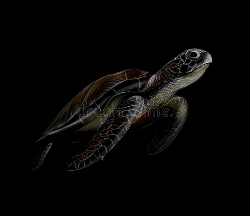 Portrait of a big sea turtle on a black background royalty free illustration