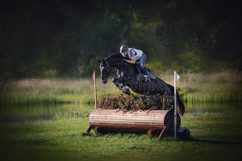 Black horse with woman rider jumping over obstacle during eventing cross country competition in summer. Portrait of black horse with woman rider jumping over royalty free stock photo