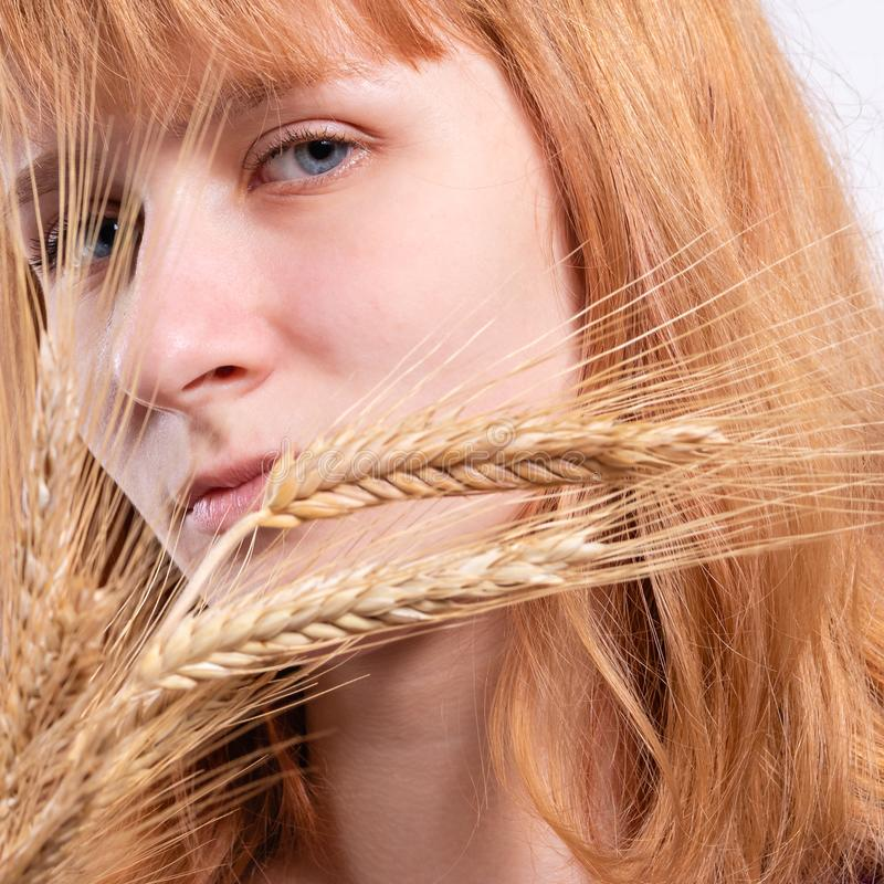 Portrait of a blonde girl with ears of wheat stock image