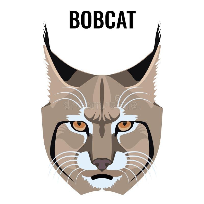 Portrait of bobcat vector illustration isolated on white. Cat specie vector illustration