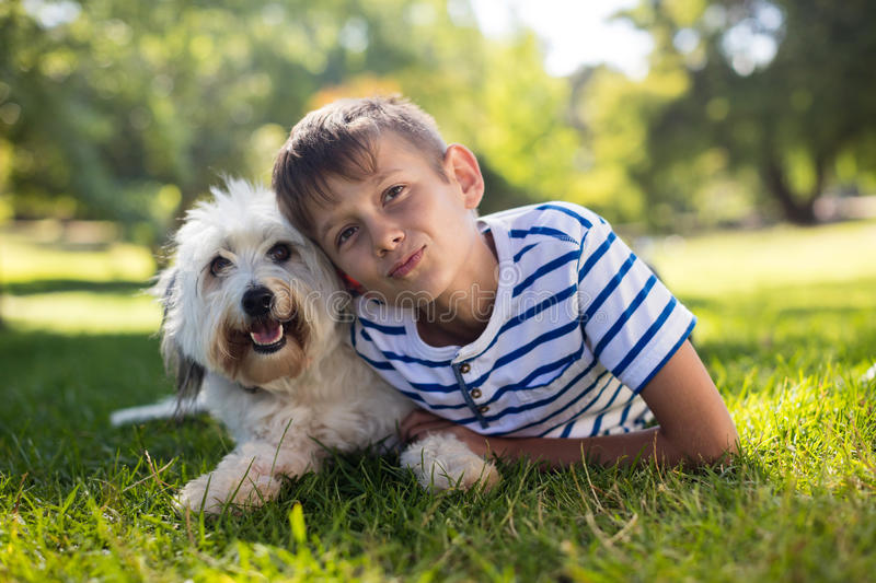 Portrait of boy with dog in park stock image
