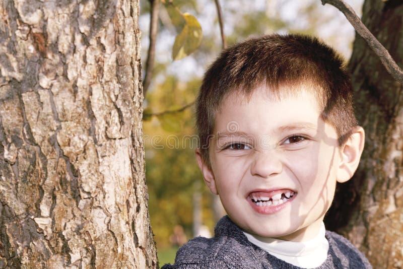 Portrait Of Boy On Tree Stock Photos