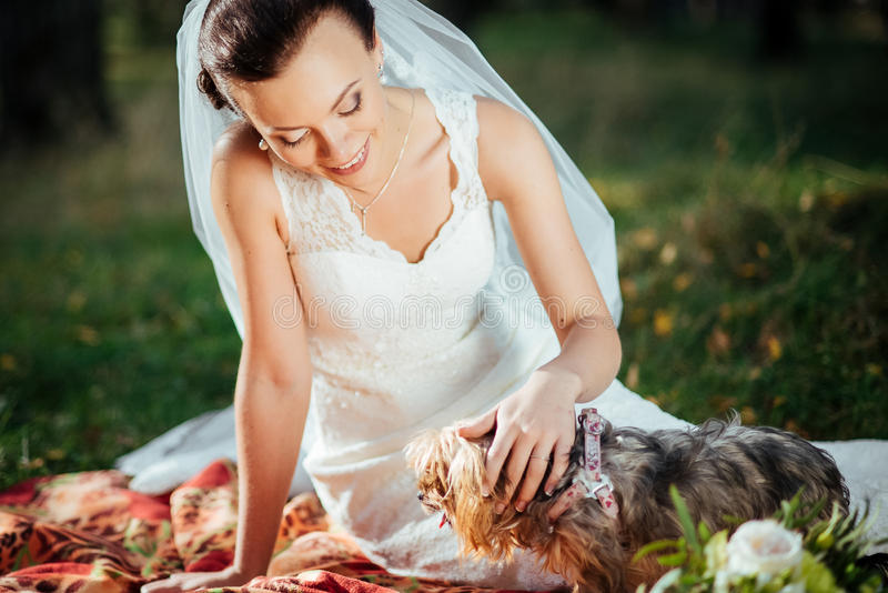 Portrait of a bride with a dog royalty free stock image