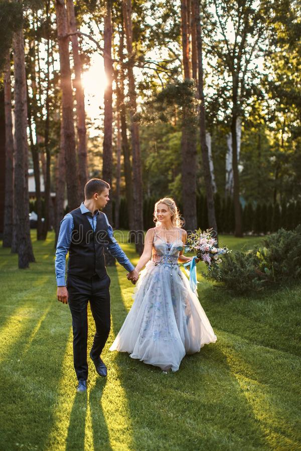 Portrait of the bride and groom in the forest royalty free stock image