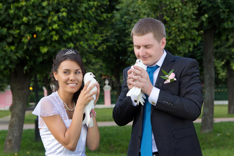 Download Portrait Of Bride And Groom In The Hands Of The Do Stock Photo - Image: 28537158