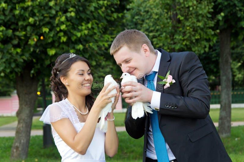 Download Portrait Of Bride And Groom In Hands Of Pigeons Stock Image - Image: 26327337