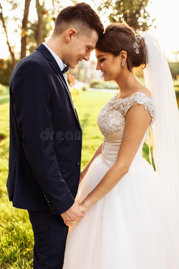 Portrait of the bride and groom in nature, beautiful couple in love. Portrait of the bride and groom in nature stock photos