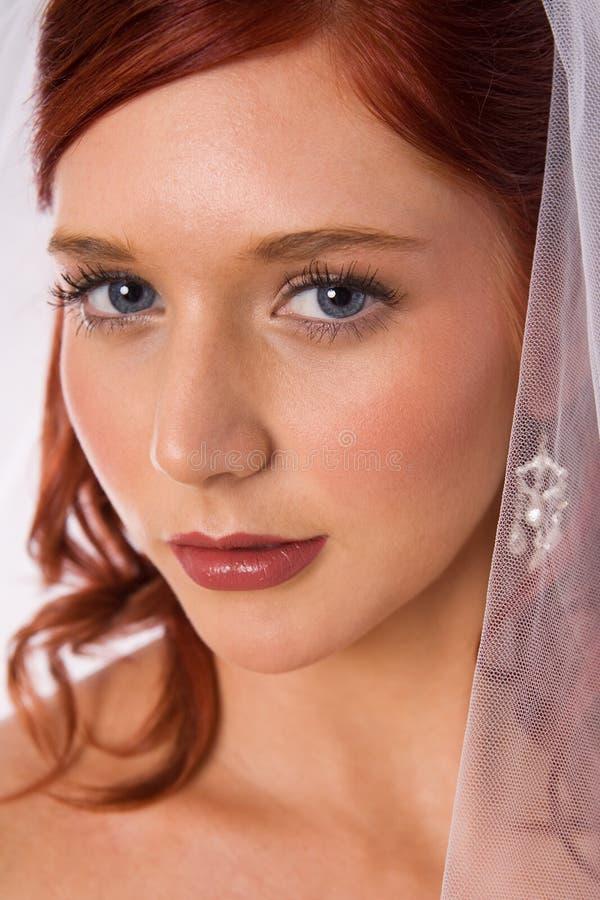 Portrait of bride with veil stock photos