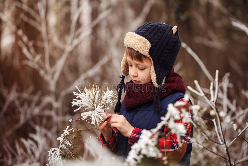 Portrait brooding cute boy in warm winter forest stock photo
