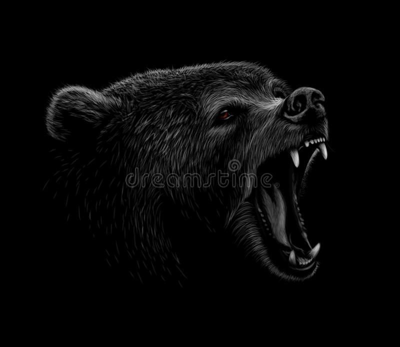 Portrait of a brown bear head on a black background. Grin of a bear royalty free illustration