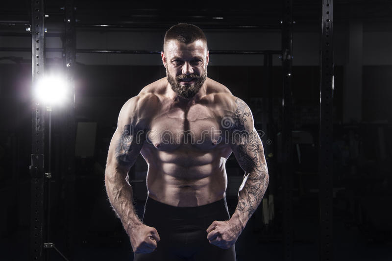 The portrait of brutal muscular athlete preparing and concent stock photo