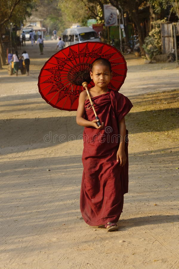 Portrait of Burmese monk royalty free stock images