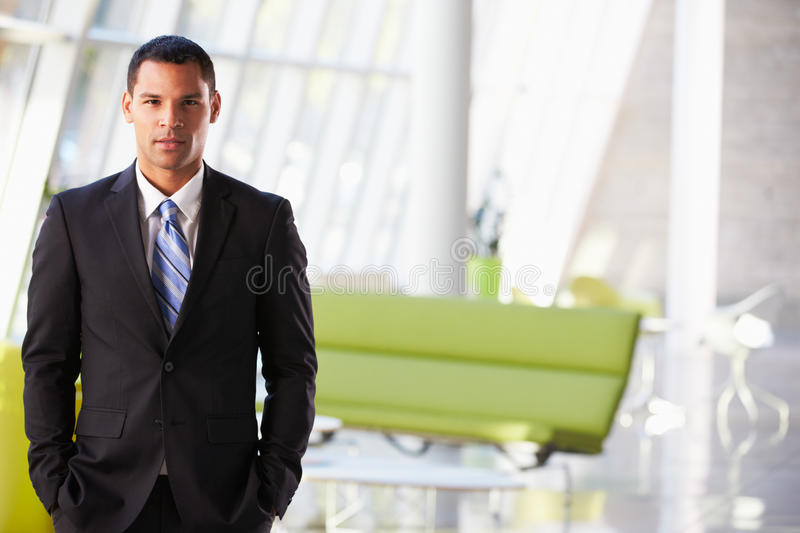 Download Portrait Of Businessman Standing Modern Office Reception Stock Photo - Image: 28523300