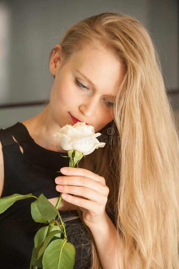Portrait of calm woman in black dress smelling the rose flower. Indoor royalty free stock photo