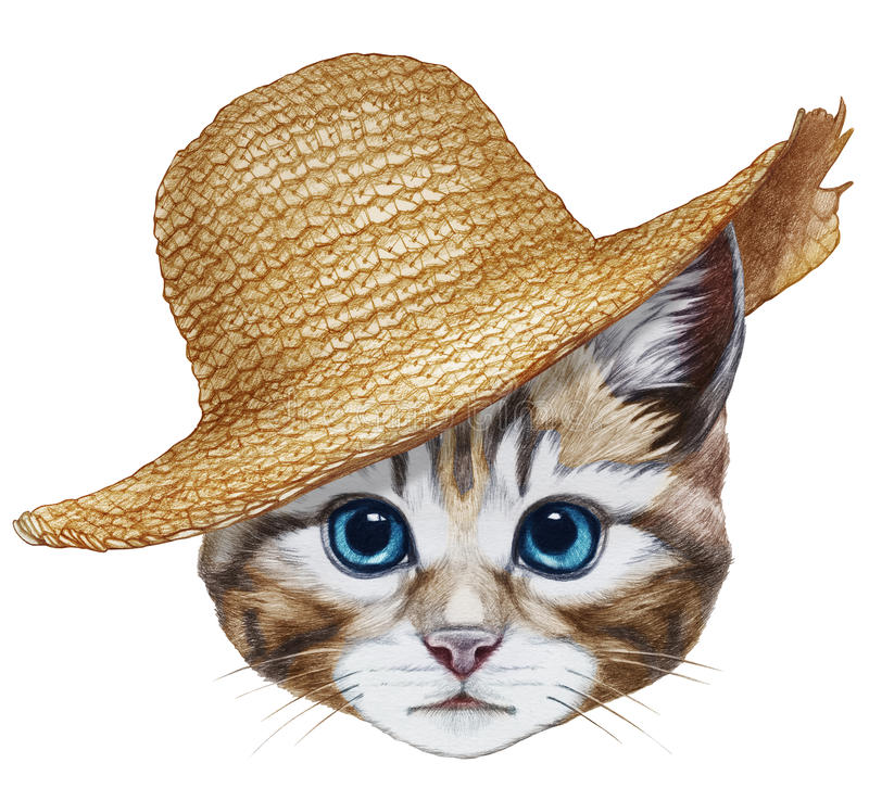 Portrait of Cat with straw hat. Hand-drawn illustration, digitally colored vector illustration