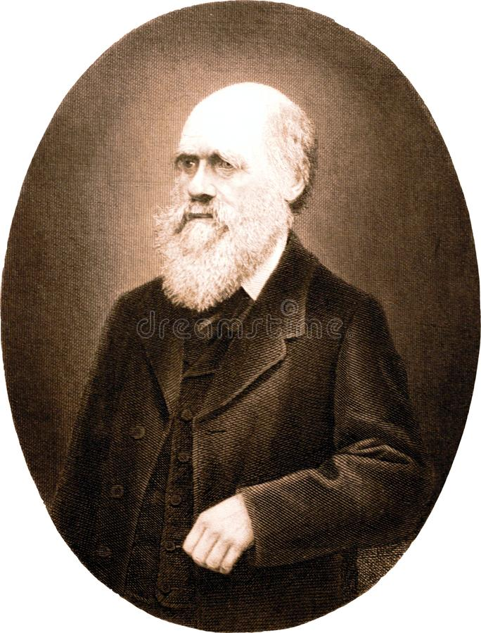 Portrait of Charles Darwin - copper engraving stock photography
