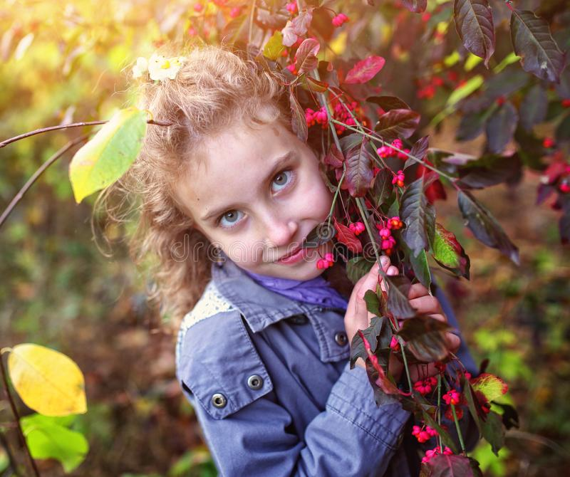 Portrait of a charming little girl in an autumn day stock images