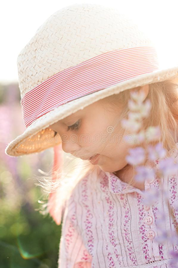 Portrait of a charming little girl in the rays of the setting sun royalty free stock image