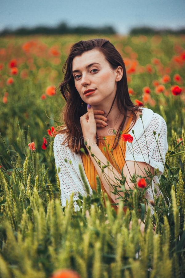 Portrait of a charming woman in poppy flowers royalty free stock image