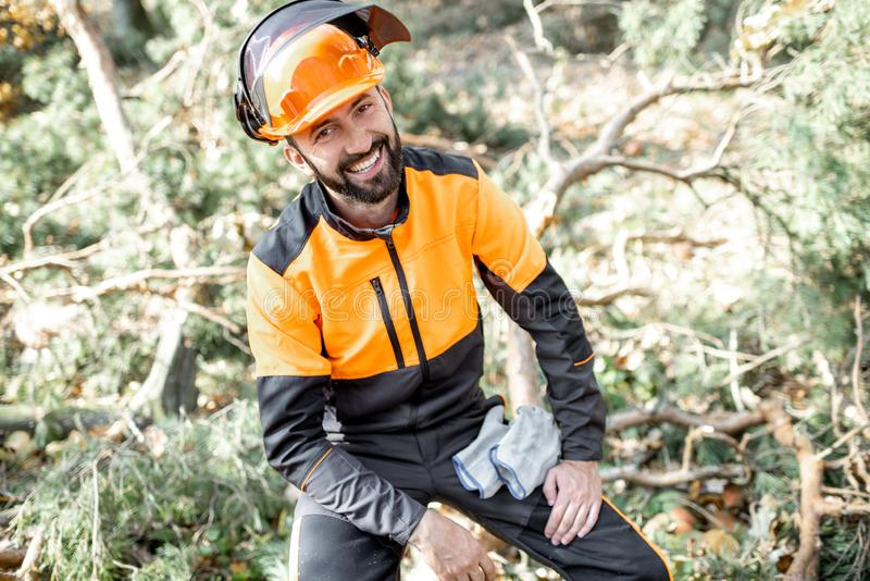 Professional lumberman portrait in the forest royalty free stock photography