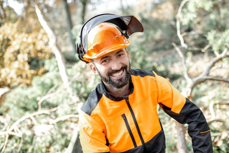 Professional lumberman portrait in the forest royalty free stock photos