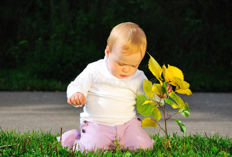 Download Portrait Of Child Holding Yellow Leaves Stock Photo - Image: 10904128