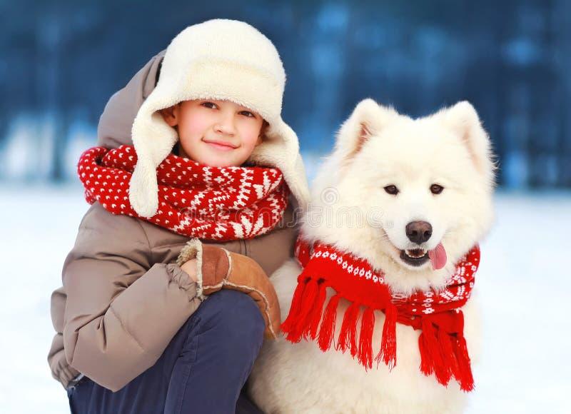 Portrait christmas child boy walking with white Samoyed dog in winter stock image
