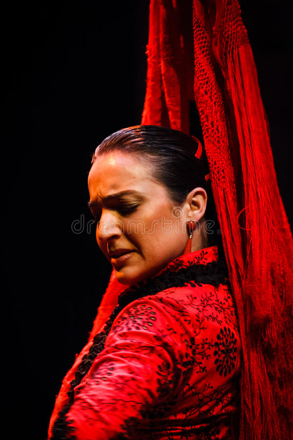 Download Portrait Of A Classical Andalusian Flamenco Dancer Editorial Stock Photo - Image: 26900488