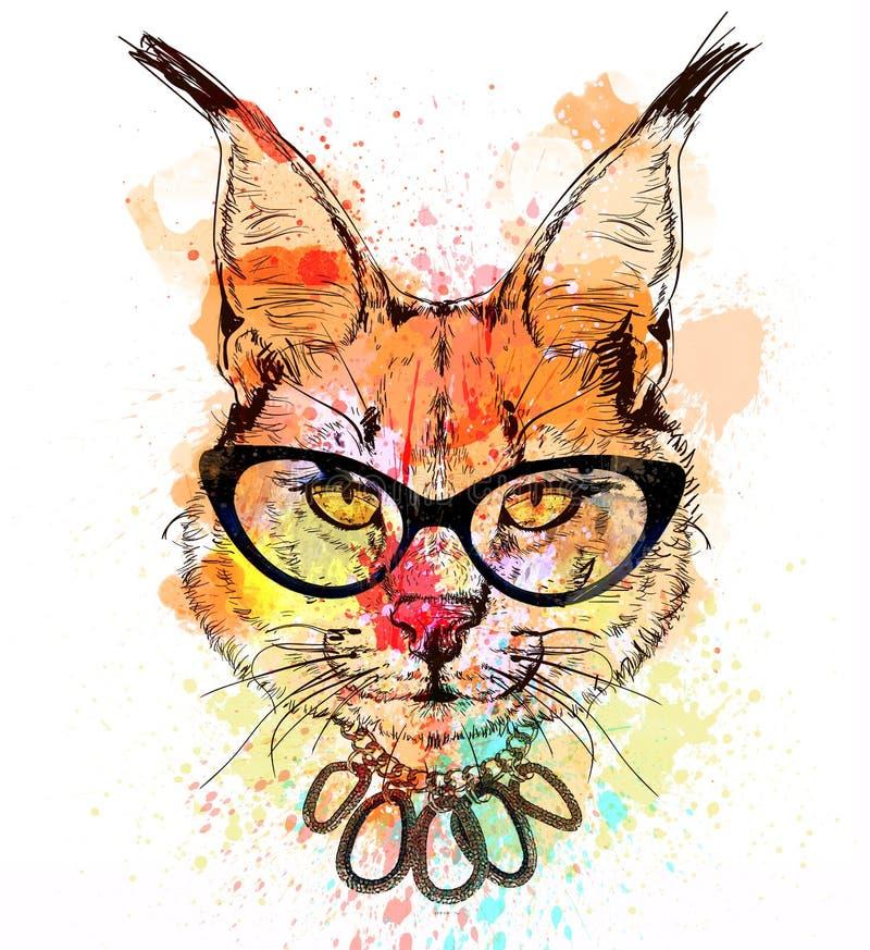 Portrait coloré de caractère de chat sauvage illustration libre de droits