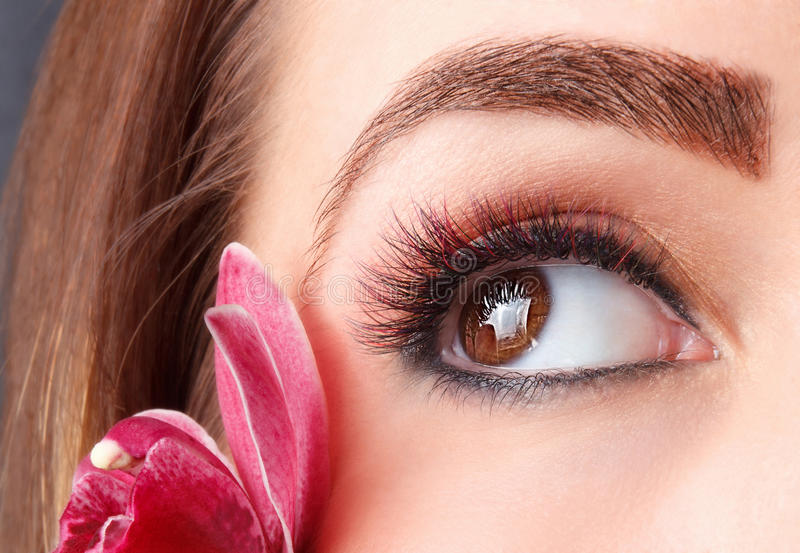 Portrait of colorful eyelash extensions stock image