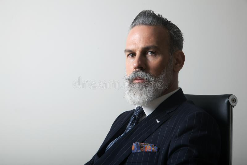 Portrait of confident bearded middle aged gentleman wearing trendy suit over empty gray background. Copy Paste space royalty free stock photo