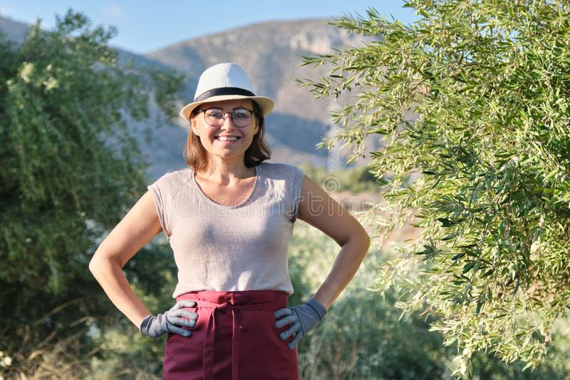Portrait of confident woman olive farm owner, background olive trees in the mountains stock image